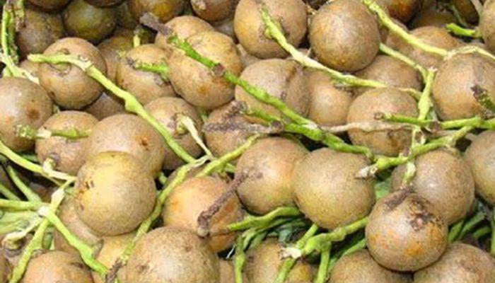 fruto-con-cascara